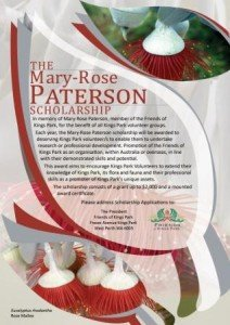 Webpage Mary-Rose-Paterson-Scholarship