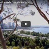 Kings Park needs Friends like you!